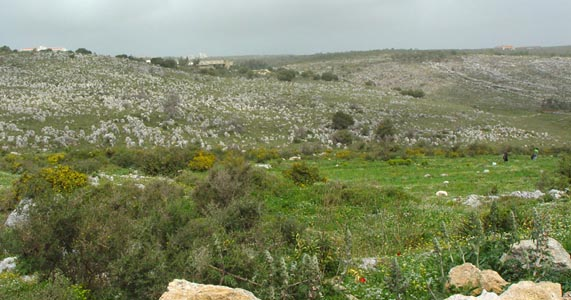 Panoramic view of Wadi Keoue Middle Palaeolithic Prehistoric Site